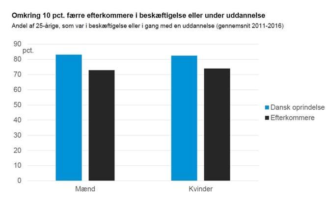 Omkring 10 pct. færre efterkommere i beskæftigelse eller under uddannelse