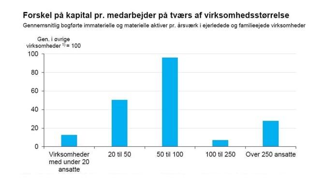 Forskel på kapital pr. medarbejder på tværs af virksomhedsstørrelse