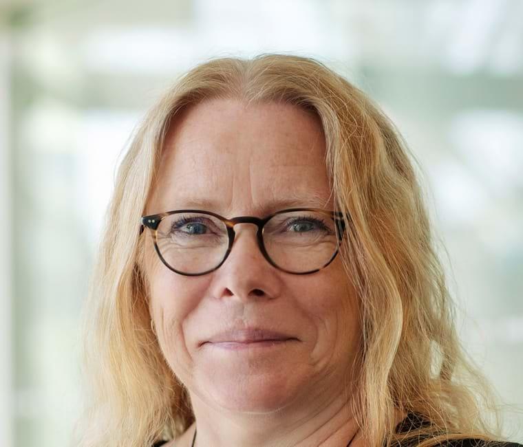 Karin Klitgaard, Underdirektør i DI