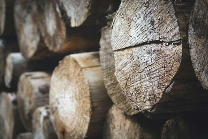 Træbiomasse